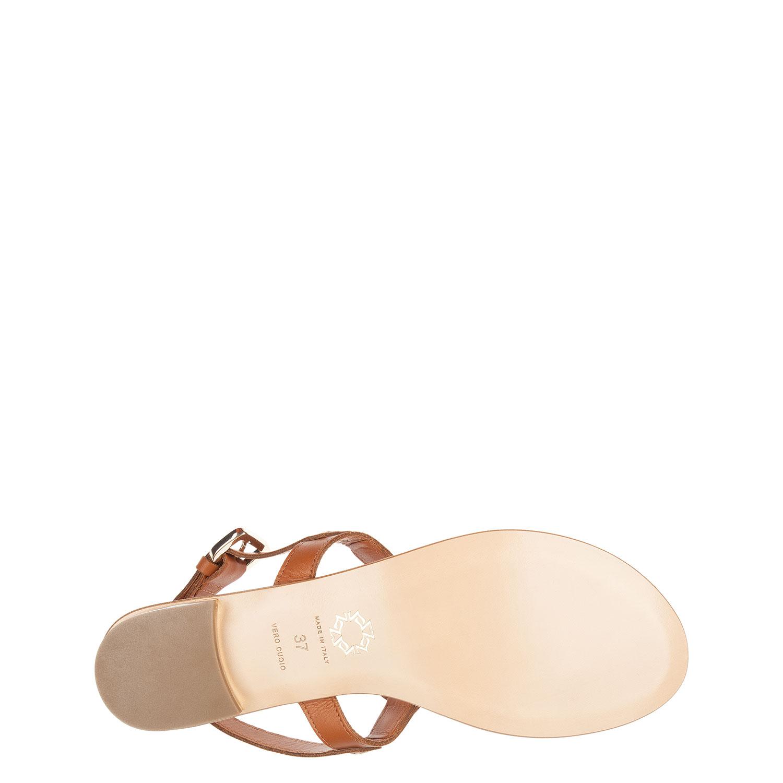 Кожаные сандалии с фирменной металлической фурнитурой от Carlo Pazolini
