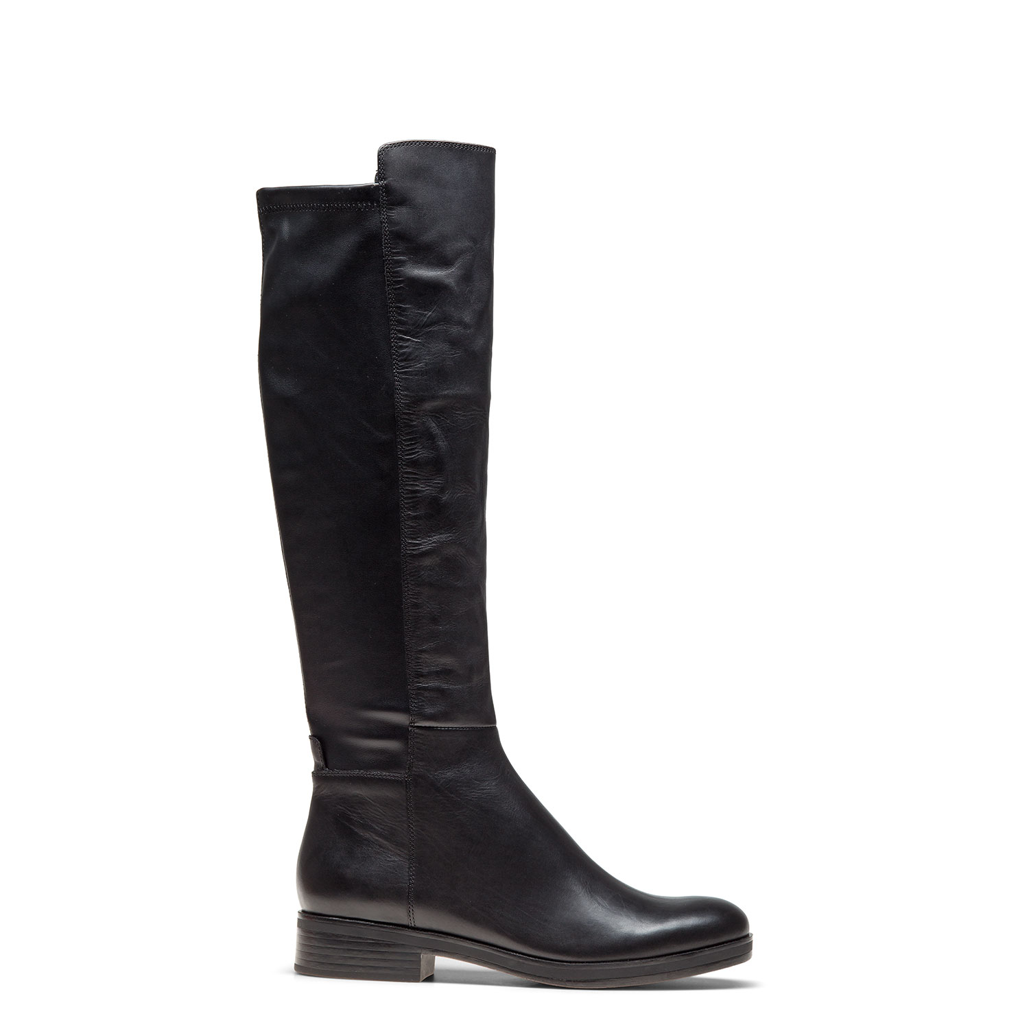 Women's high boots CARLO PAZOLINI MT-TID2-1